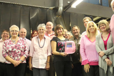EEC's pink rockers